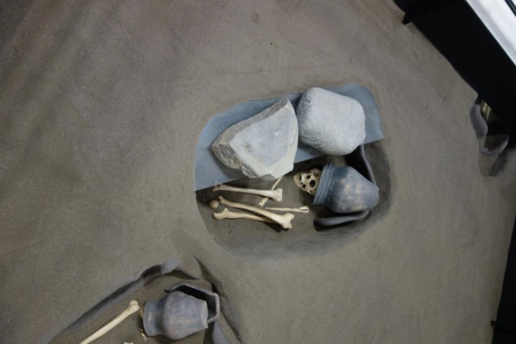 オホーツク文化人の骨4