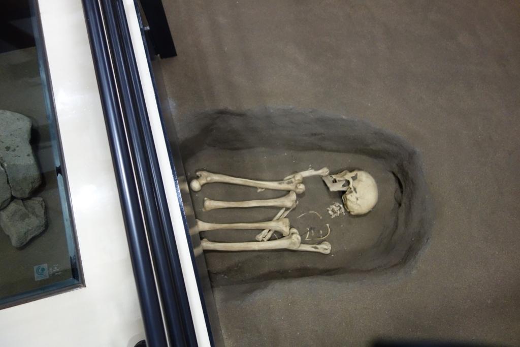 オホーツク文化人の骨2