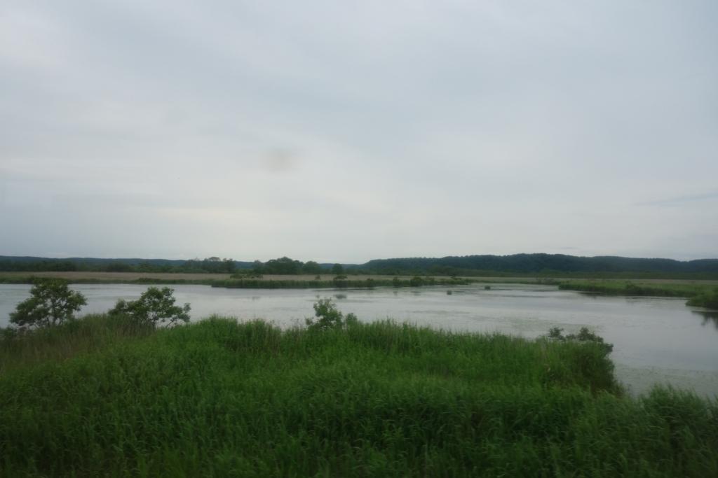 釧網本線の車窓から見える釧路湿原