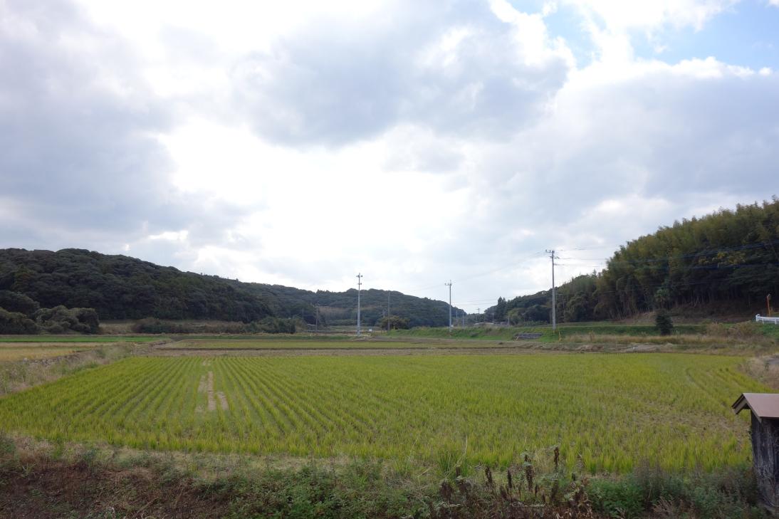 壱岐島の美しい風景5