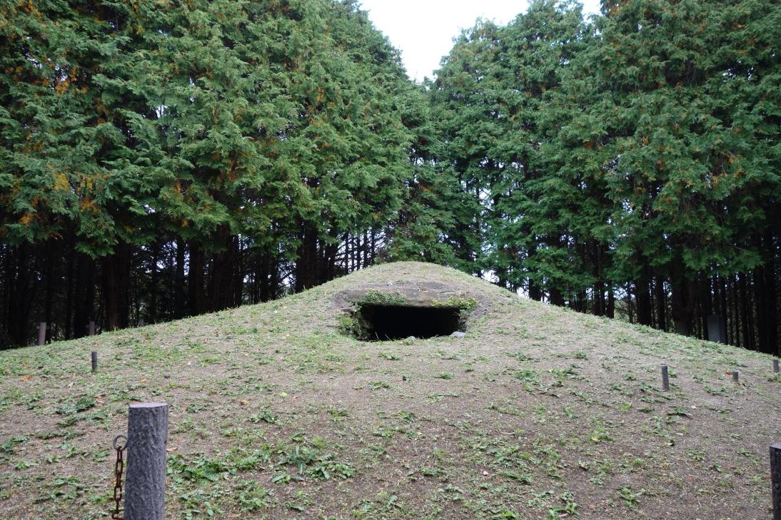 大塚山古墳・なだらかにカーブを描いた墳丘面1