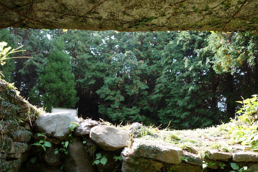 大塚山古墳・の中から外を見る