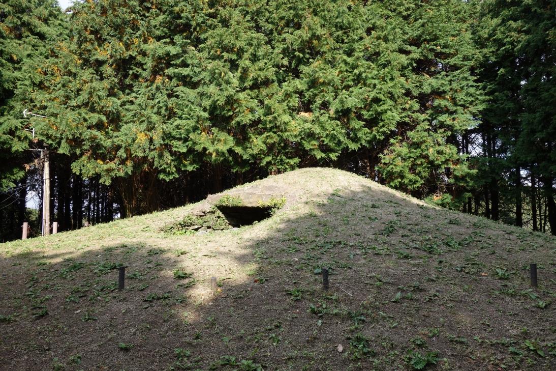 大塚山古墳・なだらかにカーブを描いた墳丘面2