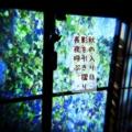 [iphoneography][photoikku][fxcamera][jhaiku][俳句]秋の入り日 影を引き摺り 長夜呼ぶ [山乃鯨]
