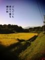 [iphoneography][photoikku][jhaiku][fxcamera][俳句]どんぐりも 併せて香る 郷の秋 [山乃鯨]