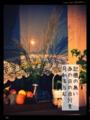 [iphoneography][photoikku][jhaiku][fxcamera][PixlrExpress][俳句]記憶の無い あの日の自分を 月知るらむ [山乃鯨]