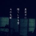 [iphoneography][photoikku][jhaiku][slowshutter][fxcamera][俳句]真夜中に 降りしきる雪 その気配 [山乃鯨]