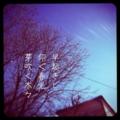 [iphoneography][photoikku][fxcamera][jhaiku][俳句]早起きし 仰ぐ春光 芽吹く木々 [山乃鯨]