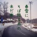 [iphoneography][photoikku][instagram][jhaiku][haiku][俳句]春雪に そぼ降る雨の 未だ寒し [山乃鯨]