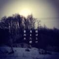 [iphoneography][photoikku][instagram][jhaiku][俳句][haiku]朝ぼらけ 鳥また眠し 春雨水 [山乃鯨]