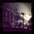 [iphoneography][pixlrexpress][instagram][photoikku][jhaiku][haiku][俳句]木の芽梅雨 風に木々冷え 濡れしたる [山乃鯨]