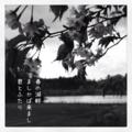[iphoneography][photoikku][instagram][jhaiku][haiku][俳句]春の湖畔 ましかば来まし 君とふたり [山乃鯨]