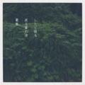 [photoikku][fxcamera][iphoneography][poem][jhaiku][俳句]しとど降る 返る葉の波 葛嵐 [山乃鯨]