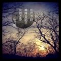 [instagram][photoikku][jhaiku][poem][俳句]冬の夕時 霜降る地平 火照る空 [山乃鯨]