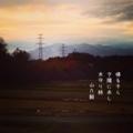 [photoikku][instagram][jhaiku][poem][iphoneography][俳句]帰る子ら 夕陽に赤し 木守り柿 [山乃鯨]