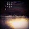 [photoikku][instagram][jhaiku][poem][575][季語][俳句]冬河畔 行雲流水 鳥渡る [山乃鯨]