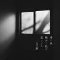 [photoikku][VSCOcam][jhaiku][poem][季語][五七五][俳句][写真俳句]春の風 騒めく影の 昼ひなた [山乃鯨]
