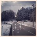 [photoikku][instagram][poem][jhaiku][五七五][季語][俳句][写真俳句]鳥鳴けど いささ音せぬ 春の雪 [山乃鯨]