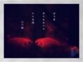 [photoikku][jhaiku][haiku][poem][poetry][verse][俳句][写真俳句][五七五][夏]巡る夏 戻れぬあの日 かの笑顔 [山乃鯨]