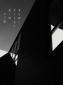 [photoikku][jhaiku][haiku][poem][写真俳句][フォト俳句][夏][summer][俳句][季語]夏日射し 平たき白と 黒き淵 [山乃鯨]