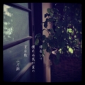 [photoikku][jhaiku][haiku][poem][写真俳句][フォト俳句][夏][summer][俳句][季語]帰省して 慣れぬ我が家の 夏座敷 [山乃鯨]