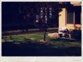 [photoikku][jhaiku][haiku][poem][秋][autumn][俳句][季語][写真俳句][フォト俳句]地虫鳴く ひとつ影落ち 午後の空 [山乃鯨]