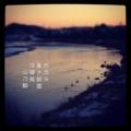 [photoikku][jhaiku][haiku][poem][冬][winter][俳句][季語][写真俳句][フォト俳句]色沈み 重き朝靄 浮寝鳥 [山乃鯨]