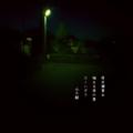[photoikku][jhaiku][haiku][poem][夏][summer][俳句][季語][写真俳句][フォト俳句]夜半(よは)寝覚め 咽せる夜の香 コノハズク [山乃鯨]