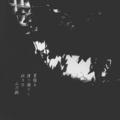 [photoikku][jhaiku][haiku][poem][夏][summer][俳句][季語][写真俳句][フォト俳句]夏陰を 渡り遊びし 幼き日 [山乃鯨]