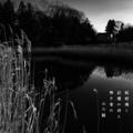 [photoikku][jhaiku][秋][autumn][poetry][季語][写真俳句][snapseed][photohaiku][フォト俳句]蚯蚓(みみず)鳴く 記憶の故人 無き家の [山乃鯨]