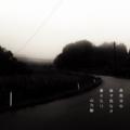 [photoikku][jhaiku][秋][autumn][poetry][季語][写真俳句][snapseed][photohaiku][フォト俳句]霖雨(りんう)冷ゆ 森ぞ色なき 蕭々たり [山乃鯨]