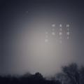 [photoikku][jhaiku][冬][winter][poetry][季語][写真俳句][snapseed][photohaiku][フォト俳句]持て帰る 寒月戯(ざ)るる 郷の樅(もみ)[山乃鯨]
