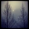 [photoikku][jhaiku][冬][winter][poetry][季語][写真俳句][via_me][photohaiku][フォト俳句]陽を塞げ 秘め隠せ雪 白日夢[山乃鯨]