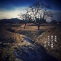 [photoikku][jhaiku][春][spring][poetry][季語][写真俳句][snapseed][photohaiku][フォト俳句]春疾風 陽だまり慕情 野を行かむ[山乃鯨]