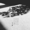 [photoikku][jhaiku][春][spring][poetry][季語][写真俳句][snapseed][photohaiku][フォト俳句]はるのひの あたたかさ ひのにほひ[山乃鯨]