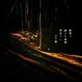 [photoikku][jhaiku][春][spring][poetry][季語][写真俳句][snapseed][photohaiku][フォト俳句]瞼閉づ 幽(かそ)けき春陽 家在りし[山乃鯨]