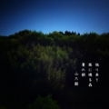 [photoikku][jhaiku][夏][summer][poetry][季語][写真俳句][snapseed][photohaiku][フォト俳句]独り来て 風に鳴る森 夏の朝[山乃鯨]