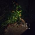[fontstudio][俳句][jhaiku][夏][summer][poetry][季語][写真俳句][snapseed][photohaiku]老い独り 記憶探して 夏の街[山乃鯨]