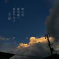 [夏][季語][写真俳句][snapseed][photohaiku][フォト俳句][summer][poetry][jhaiku][phonto]朝の雨 夏活劇へ 香を手向け[山乃鯨]