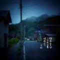 [jhaiku][夏][写真俳句][poetry][季語][photohaiku][micropoetry][summer][フォト俳句][haiku]梅雨止まず うち光る墓 城廃(すた)れて[山乃鯨]