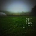 [jhaiku][秋][fall][写真俳句][poetry][季語][photohaiku][micropoetry][autumn][フォト俳句]いと匂う 薪(たきぎ)や霧の 朝ぼらけ[山乃鯨]