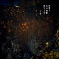 [jhaiku][春][haiku][写真俳句][poetry][季語][photohaiku][micropoetry][spring][フォト俳句]残雪下 水の胎動 燃ゆる空[山乃鯨]