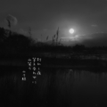[jhaiku][春][haiku][写真俳句][poetry][季語][photohaiku][micropoetry][spring][フォト俳句]別れし夜 答え合わせに 山笑う[山乃鯨]
