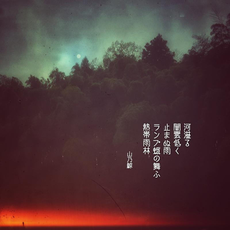 河溢る 闇雲低く 止まぬ雨 ランプ蛾の舞ふ 熱帯雨林[山乃鯨]