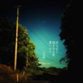[jhaiku][夏][haiku][写真俳句][poetry][季語][photohaiku][micropoetry][summer][フォト俳句]光らまし 残す少な世 夏いのち[山乃鯨]