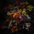 [jhaiku][夏][haiku][写真俳句][poetry][季語][photohaiku][micropoetry][summer][フォト俳句]河溢(あふ)る 結露夢見る 梅雨の夜[山乃鯨]