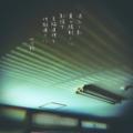 [jtanka][短歌][tanka][写真短歌][poetry][phototanka][micropoetry][フォト短歌][poem][shortpoem]添ひし影 夏の陽射しに 影探す 至極道理と 地獄通りに[山乃鯨]