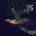 [jtanka][短歌][tanka][写真短歌][poetry][phototanka][micropoetry][フォト短歌][poem][shortpoem]夏 陽射し 光振り撒き 影踏みす 見知る子なれど 忌みし風吹き[山乃鯨