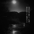 [jtanka][短歌][tanka][写真短歌][poetry][phototanka][micropoetry][フォト短歌][poem][shortpoem]母迷ひ深山(みやま)霧にて札(ふだ)違(たが)へ我生まれけむ枕濡れけり[