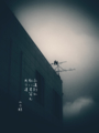 [jhaiku][夏][haiku][写真俳句][poetry][季語][photohaiku][micropoetry][summer][フォト俳句]永遠(とは)別れ虹に君笑(ゑ)む光り道[山乃鯨]